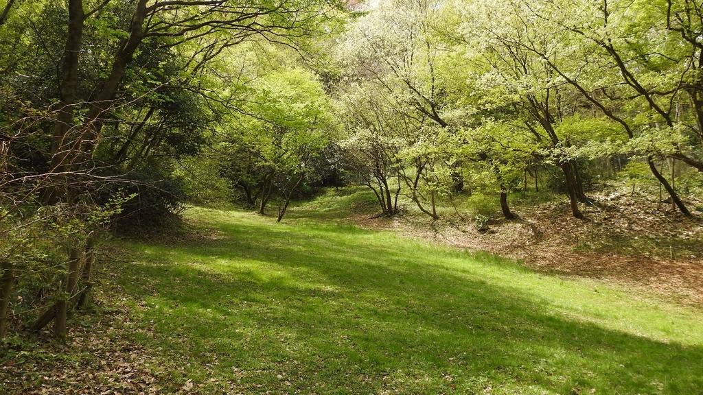 稲城第一公園