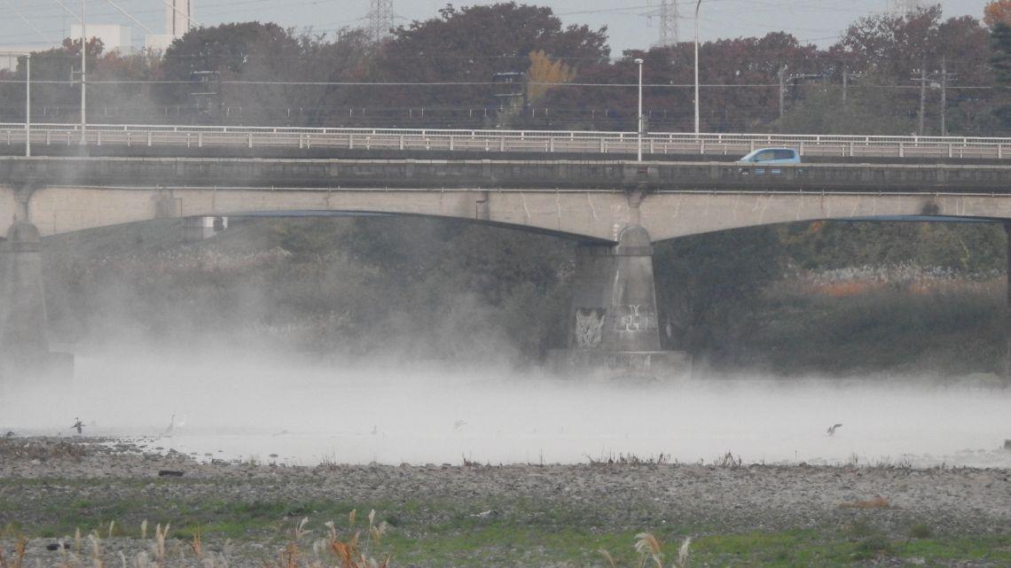 多摩川の朝霧