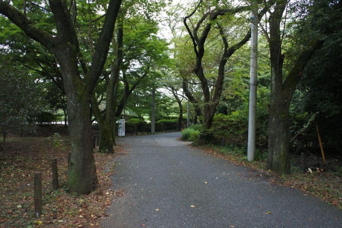 記念館の道
