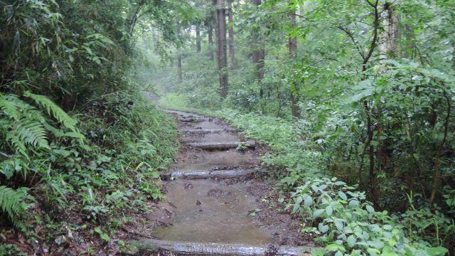 大雨の後の桜ヶ丘公園