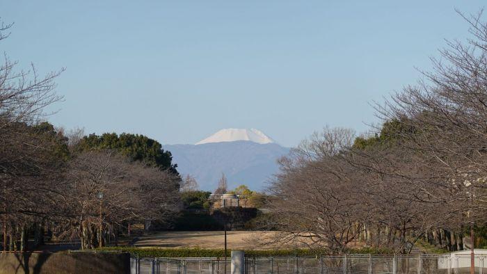 宝野公園 富士見通り