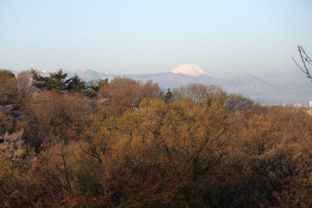 今朝は冷え込んで山に雪が
