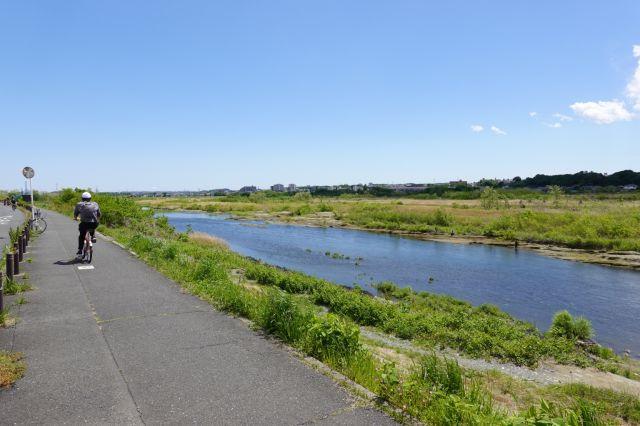 多摩川は左岸