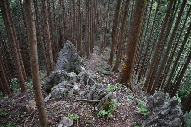 急坂の終わりに岩