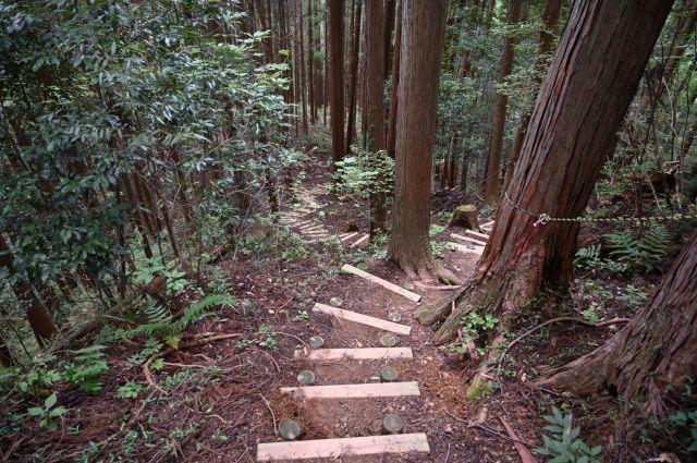下山は木の階段