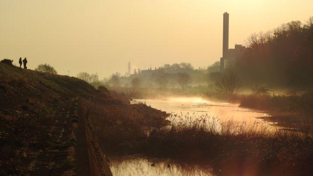 朝霧の大栗川