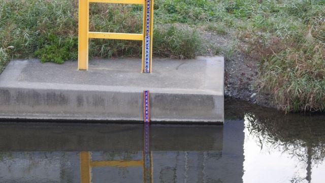大栗川の水かさを示す目盛り
