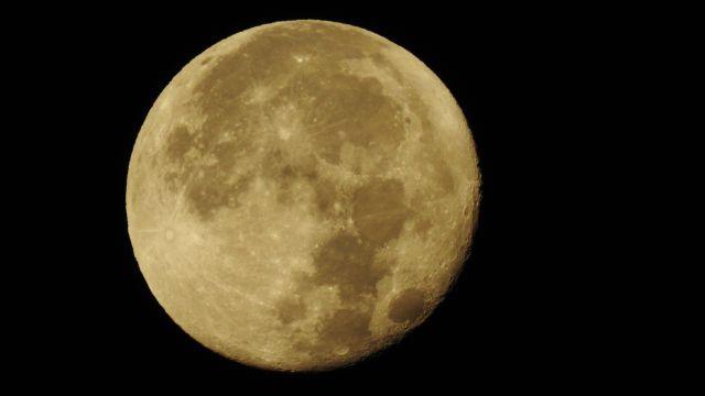 月もまだ結構大きかったです。